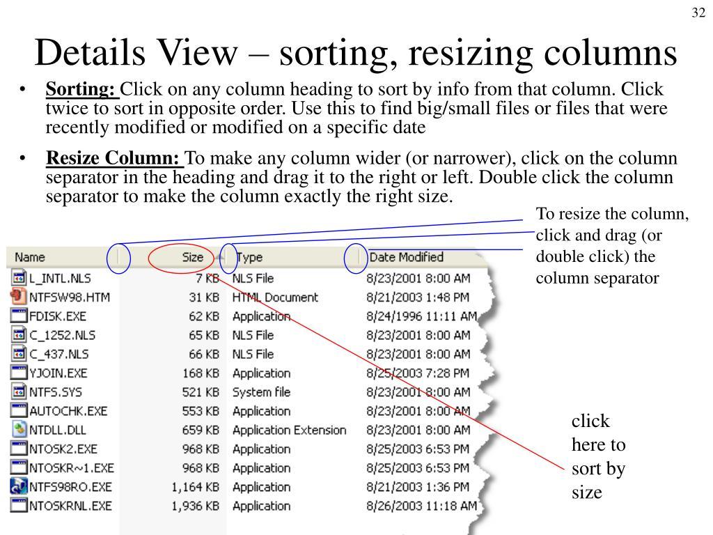 Details View – sorting, resizing columns
