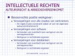 intellectuele rechten auteursrecht arbeidsovereenkomst