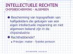 intellectuele rechten chipsbescherming algemeen