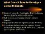 what does it take to develop a global mindset