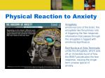 physical reaction to anxiety24