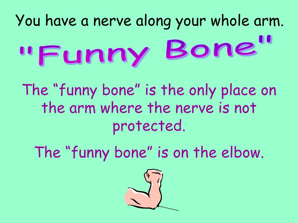 You have a nerve along your whole arm.