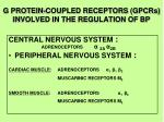 g protein coupled receptors gpcrs involved in the regulation of bp