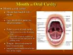mouth oral cavity