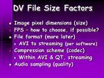 dv file size factors