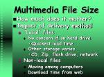 multimedia file size