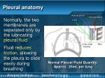 pleural anatomy16