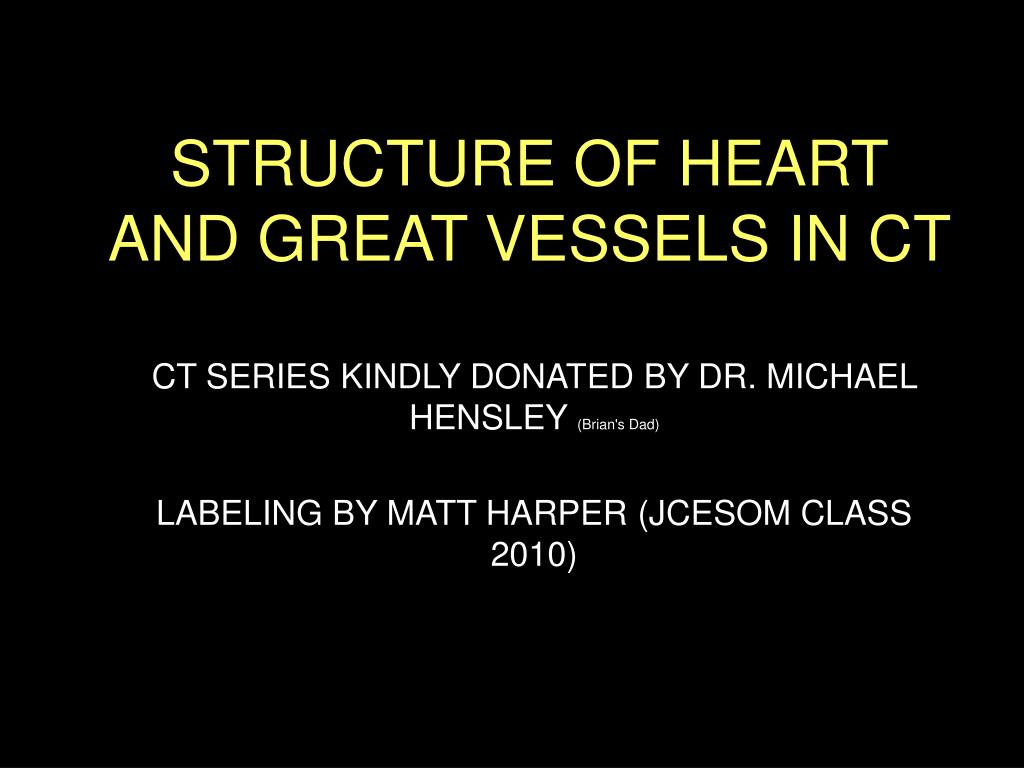 structure of heart and great vessels in ct l.
