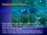 conservation efforts29