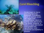 coral bleaching25