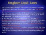 staghorn coral laws