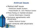 antitrust issues