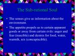 the sub rational soul