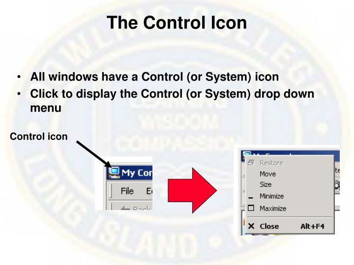 The Control Icon