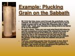 example plucking grain on the sabbath