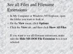 see all files and filename extensions