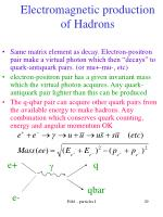 electromagnetic production of hadrons