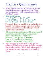 hadron quark masses