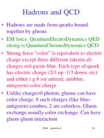 hadrons and qcd