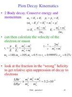 pion decay kinematics