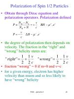 polarization of spin 1 2 particles