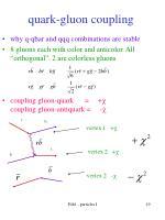 quark gluon coupling