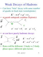 weak decays of hadrons