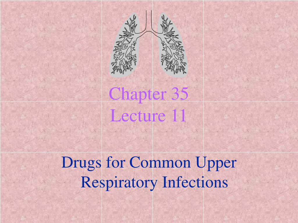 chapter 35 lecture 11 l.