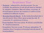 respiratory tract4