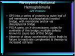 paroxysmal nocturnal hemoglobinuria gpi proteins