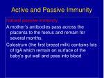 active and passive immunity29