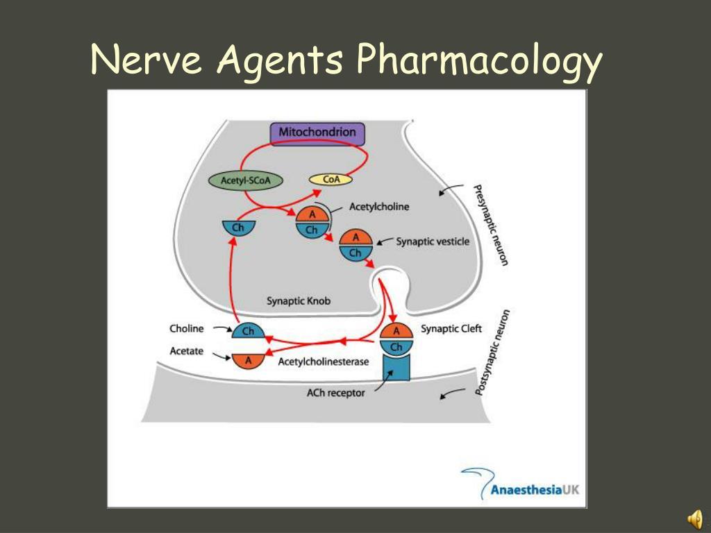 Nerve Agents Pharmacology