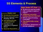 ss elements process