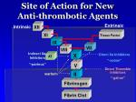 site of action for new anti thrombotic agents