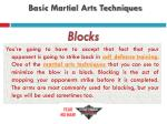 basic martial arts techniques4