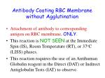 antibody coating rbc membrane without agglutination