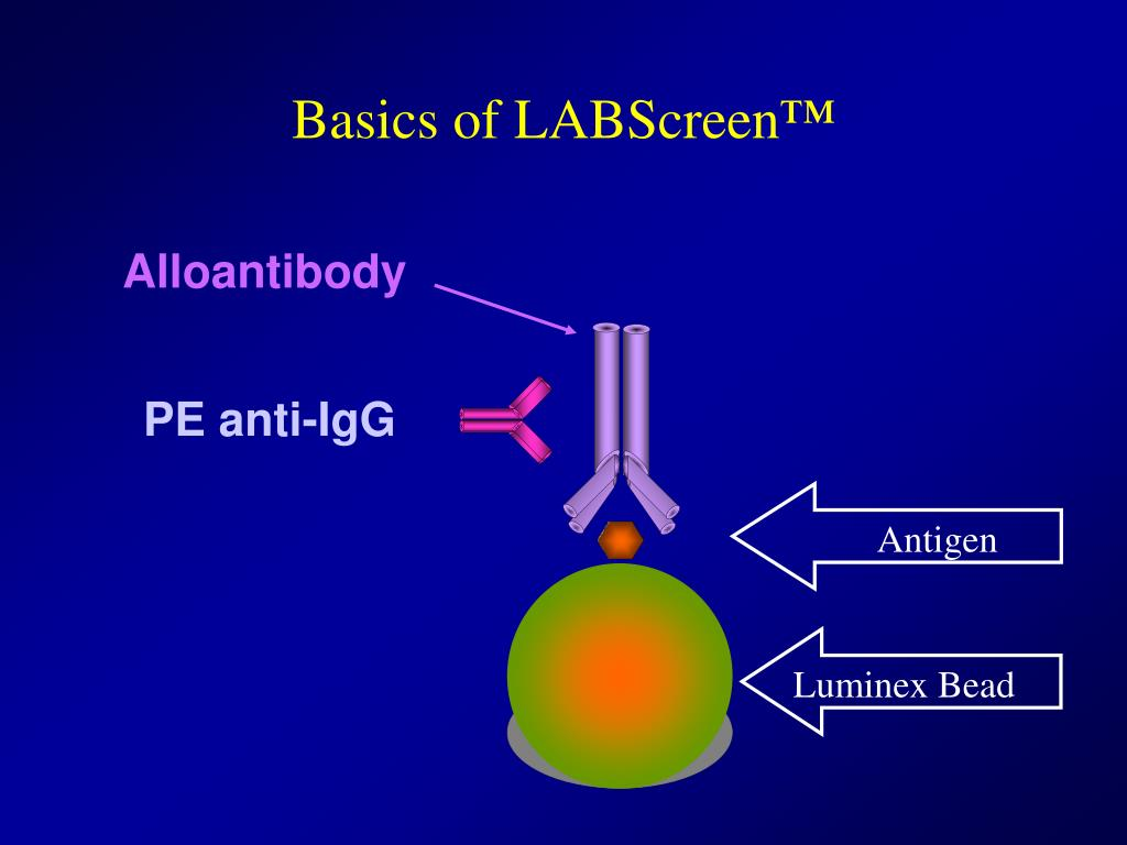 Basics of LABScreen