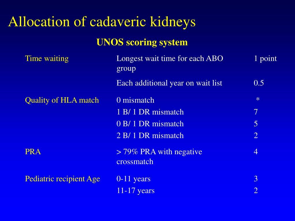 Allocation of cadaveric kidneys