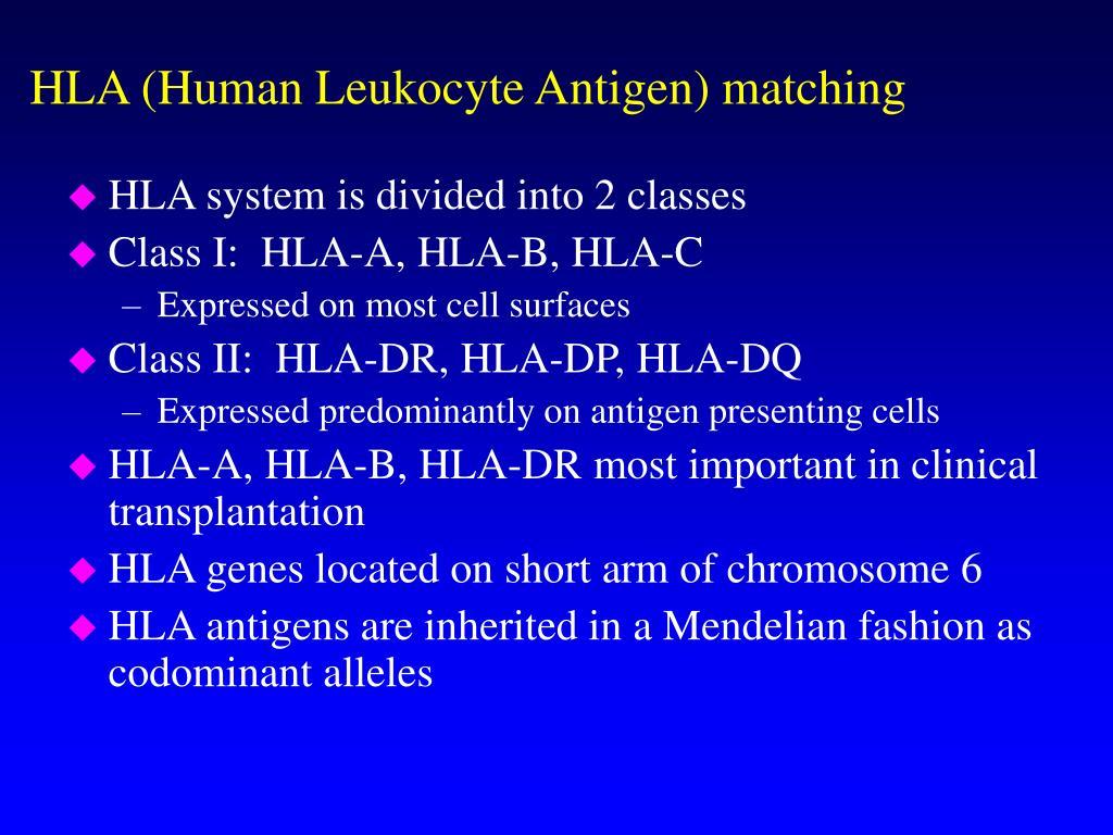 HLA (Human Leukocyte Antigen) matching