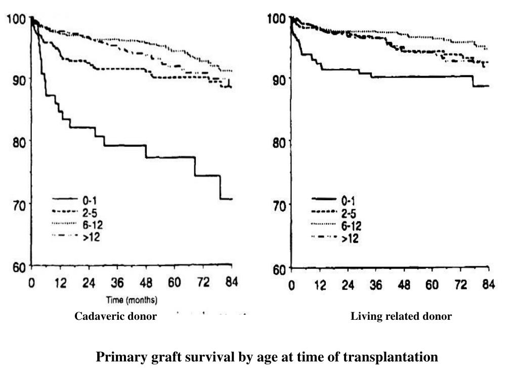 Cadaveric donor      Living related donor