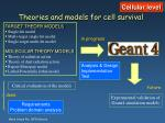theories and models for cell survival