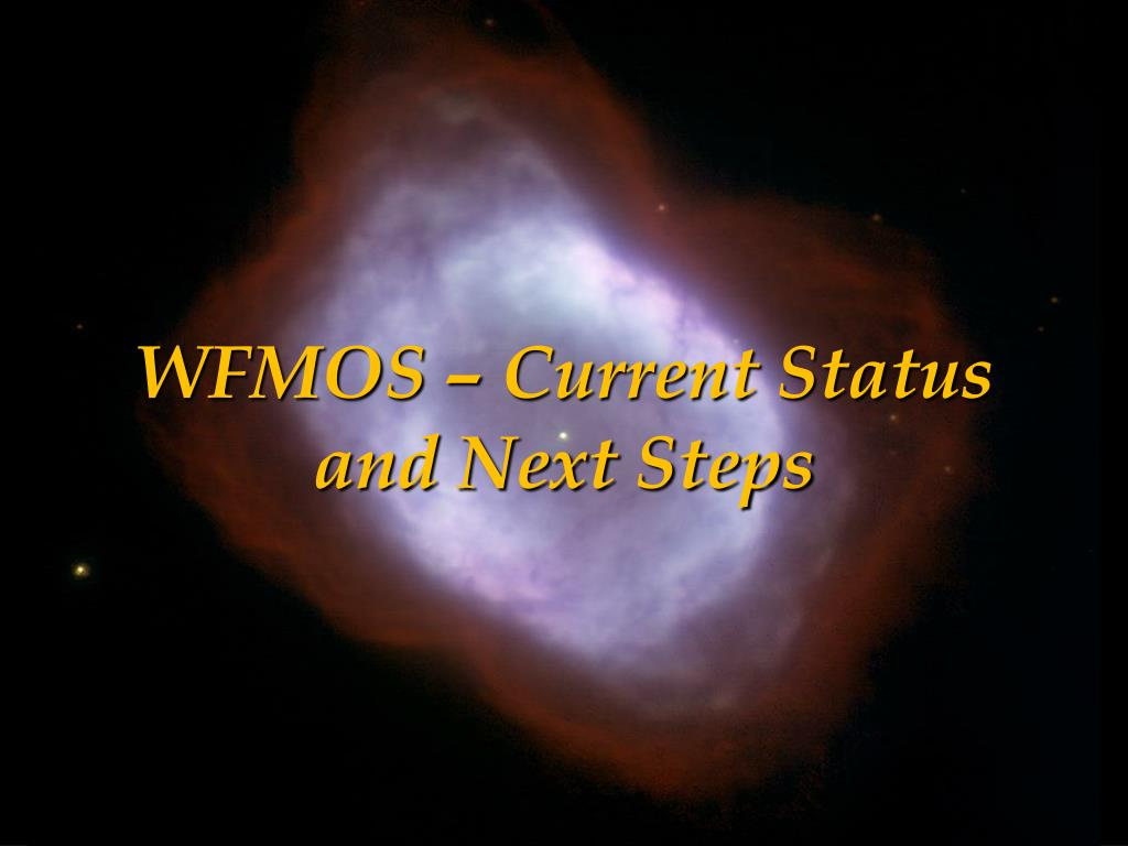 WFMOS – Current Status and Next Steps