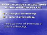 the two main sub field divisions within anthropology are