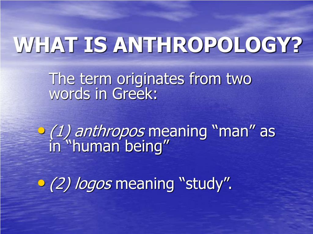 what is anthropology l.