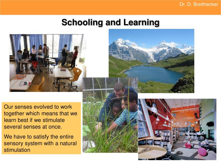 Schooling and learning
