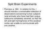 split brain experiments