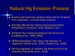 natural hg emission process