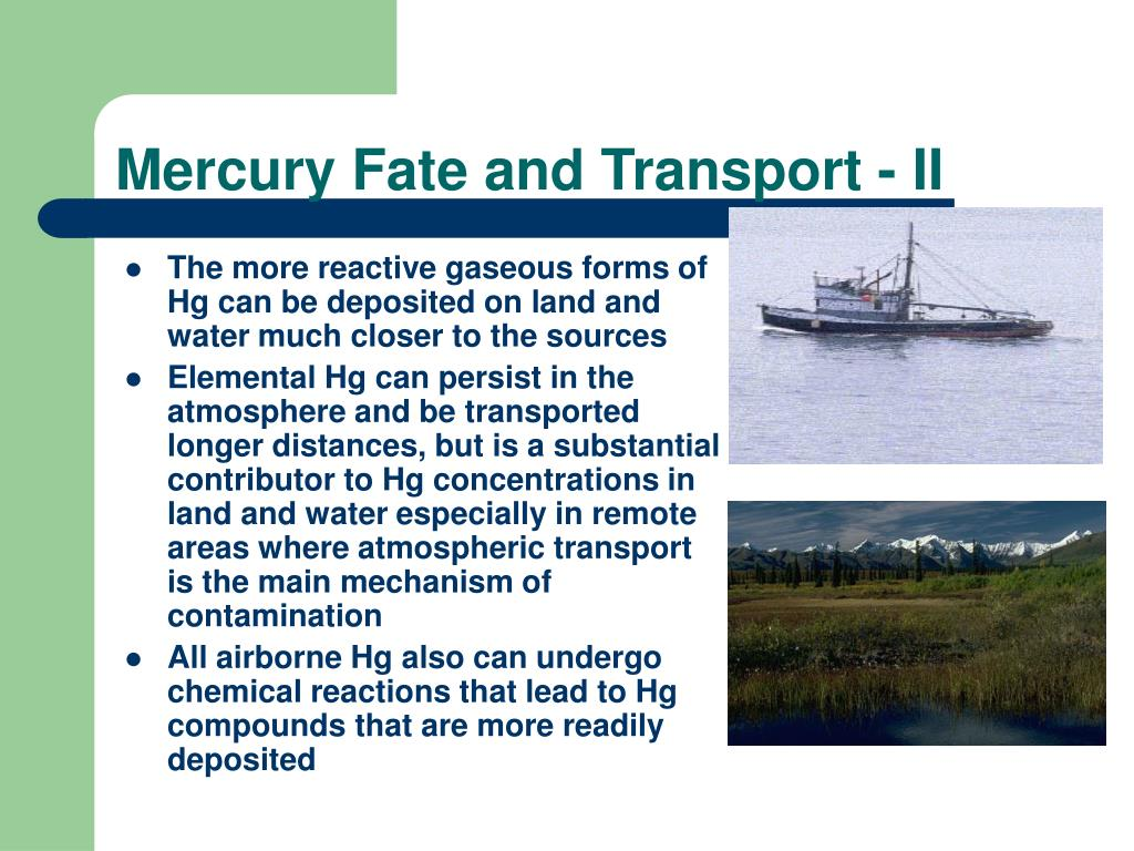 Mercury Fate and Transport - II