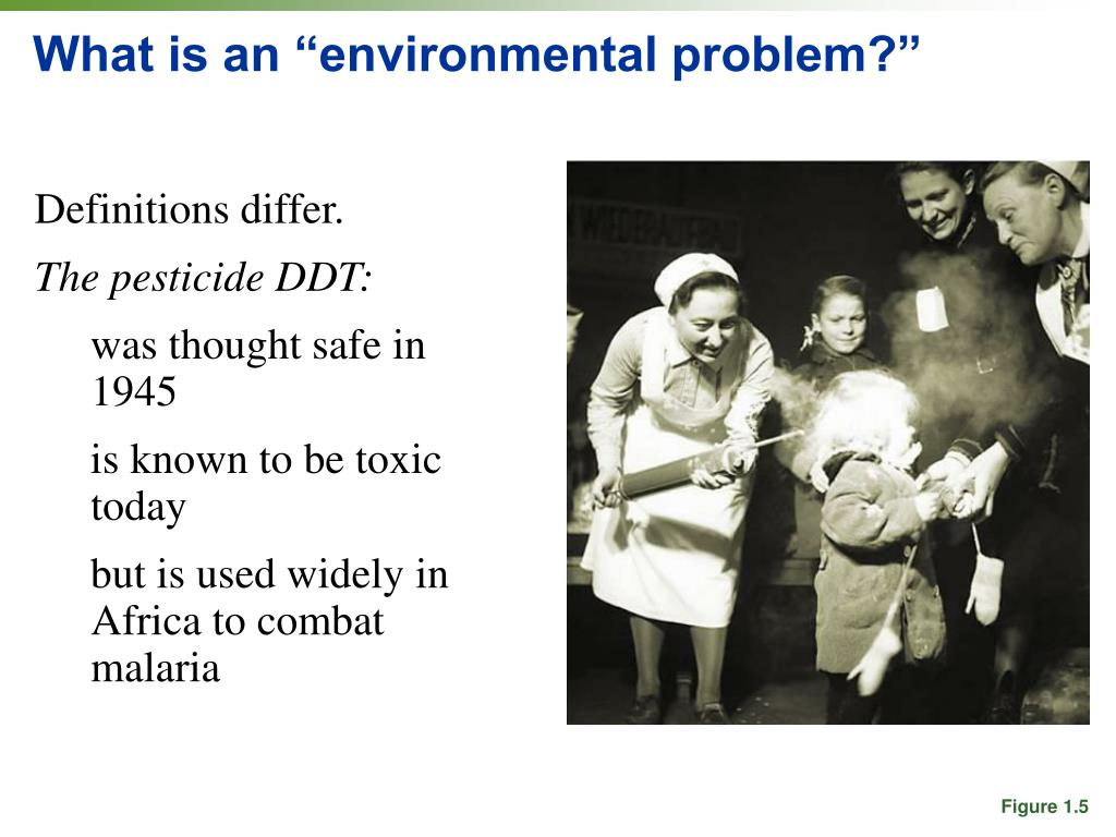 """What is an """"environmental problem?"""""""