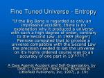 fine tuned universe entropy